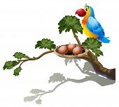 Illustration of a big branch of a tree with a nest and a bird on a white background