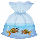 Illustration of a pouch with fishes on a white background