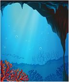 Illustration of the corals inside the seacave