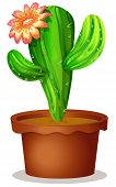 Illustration of a cactus plant with a flower on a white background