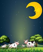 Illustration of the cows under the sleeping moon