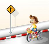 Illustration of a girl biking at the road on a white background