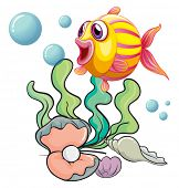 Illustration of a colourful fish under the sea with shells on a white background