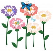 Illustration of the fresh flowers with butterflies on a white background
