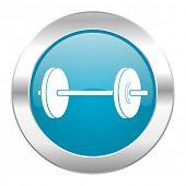 fitness internet icon