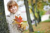 Happy smiling little girl with fallen leaves in autumn park