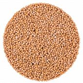Mustard Seeds Isolated On White