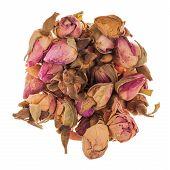 Roses Tea Bud