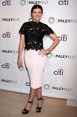 LOS ANGELES - SEP 10:  Casey Wilson at the Paley Center For Media's PaleyFest 2014 Fall TV Previews