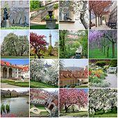 Collage Of Landmarks In Spring Prague
