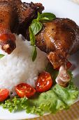 foto of roast duck  - roasted duck leg with rice on lettuce leaves on a white plate macro vertical - JPG