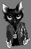 Kitten rapper - Vector illustration