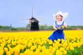 Adorable toddler girl in Dutch national costume in field of tulips next to windmill