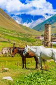 Ushguli, Upper Svaneti, Georgia, Europe. Caucasus mountains.