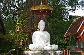 Bright white Buddha statue.