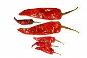 Dark and light red spicy natural chilly alone and three combined