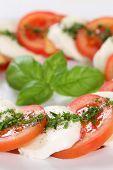 Italian Cuisine Caprese Salad With Tomatoes And Mozzarella Cheese
