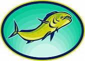 stock photo of mahi  - illustration of a dolphin fish or mahi mahi swimming viewed from a low angle - JPG