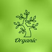 Linear illustration of Organic green tree logo on bright blurred background, eco emblem, ecology nat