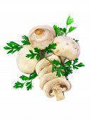 Mushroom Champignon With Green Parsley