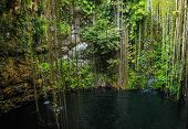 stock photo of cenote  - Mexican Ik Kil cenote near Chichen Itza - JPG