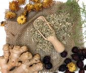 Traditional herbal medicine ingredients.