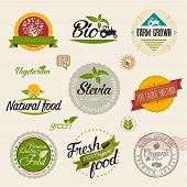 stock photo of food label  - Stevia and Organic food label Set - JPG