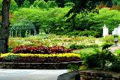 Birmingham Garden