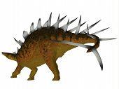 foto of herbivorous  - Kentrosaurus was a herbivorous dinosaur that lived in the Late Jurassic Period of Tanzania - JPG