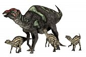 stock photo of herbivorous  - Maiasaura was a duck - JPG