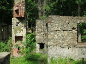 picture of house woods  - Overgrown abandoned stone mansion in the woods with exposed chimney and fireplace - JPG