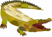 stock photo of alligators  - Low polygon style illustration of an angry alligator crocodile gaping mouth set on isolated white background - JPG