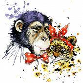 picture of leopard  - Funny monkey - JPG