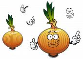 picture of bundle  - Golden onion vegetable cartoon character depicting joyful sprouted bulb with brittle husk and bundle of roots for vegetarian food design - JPG