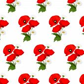 picture of chamomile  - Seamless pattern with chamomile and poppies flowers - JPG