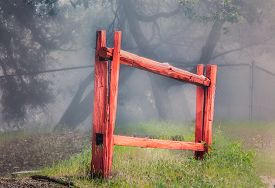 stock photo of stockade  - Isolated red stockade fence in forest fog - JPG