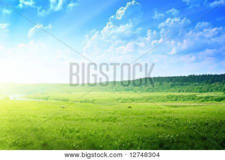 Постер, плакат: ландшафт страны: река коров и лес, холст на подрамнике
