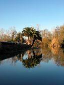 River From Estelagem Grounds