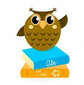 Cartoon Owl con libros aislado en blanco.
