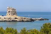 The Coast Of Gargano (puglia, Italy) At Summer