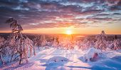 Panoramic View Of Beautiful Winter Wonderland Scenery In Scenic Golden Evening Light At Sunset With  poster