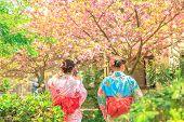 Philosophers Walk Women In Kimono poster