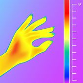 Thermal Imager Scan Human Hand Vector Illustration. The Image Of A Female Arm Using Thermographic Ca poster