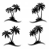 Tropical Palm Trees, Black Silhouettes And Wave Lines Isolated On White Background. Vector poster