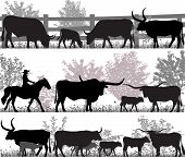 Silhouettes Of Cattle Breed Of Texas Longhorn poster
