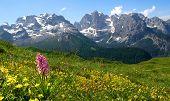 view of the mountain Brenta-Dolomites Italy