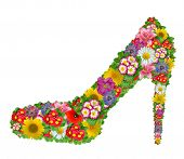 pic of stiletto  - Shoes from the flowers - JPG