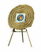 Shooting Wheel Target (isolated)