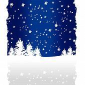 Fondo de árboles invierno (Vector o Xxl Jpeg Image)