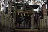 Translation: onechi Shrine In Iizuka, Fukuoka, Japan poster